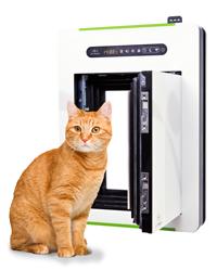petWALK - cat'n'door
