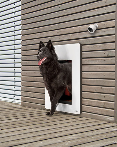petWALK pet door large installed  into a wooden facade from the outside with white cover and black dog