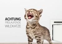 """petWALK Fun Card """"Wildkatze"""""""