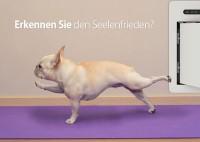 """petWALK Fun Card """"Seelenfrieden"""""""