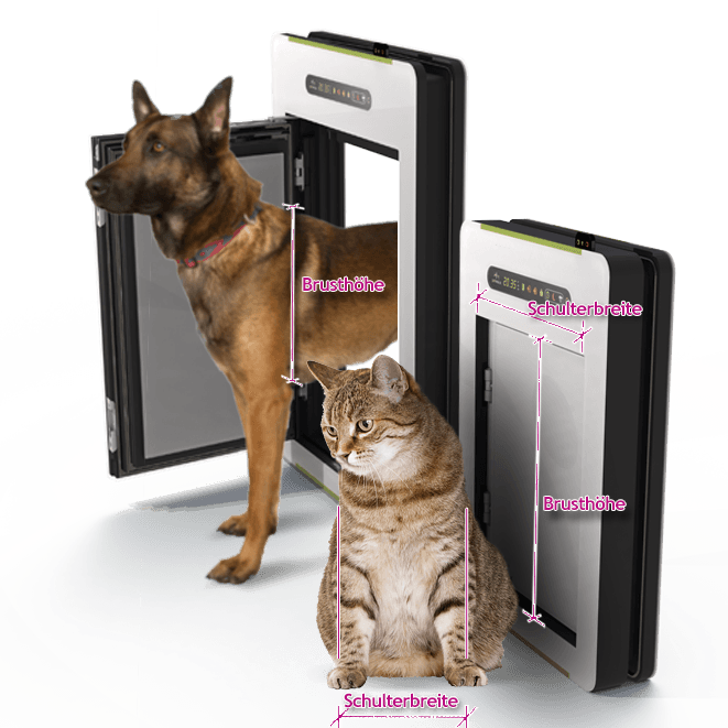 petWALK - The right size for your pet
